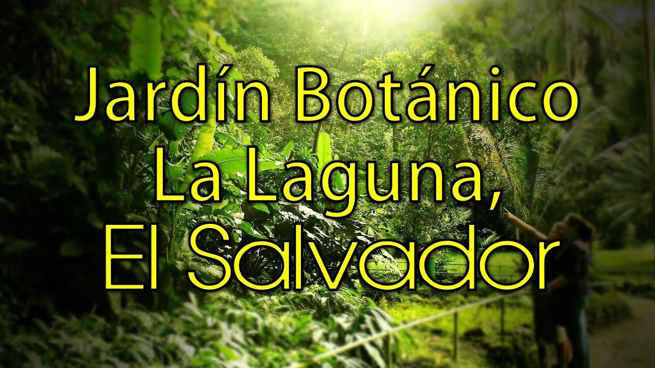 El salvador parque jard n bot nico la laguna antiguo for Jardin botanico el ejido