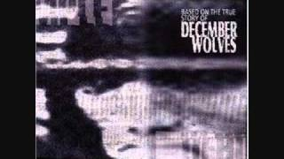 Watch December Wolves We Are Everywhere video