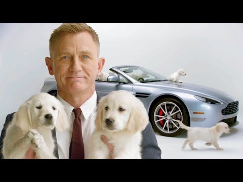 Daniel Craig Snuggles With Puppies // Omaze