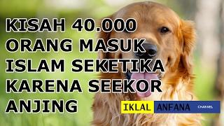 Kisah 40 000 Orang Masuk Islam Sketika Karena Seekor Anjing