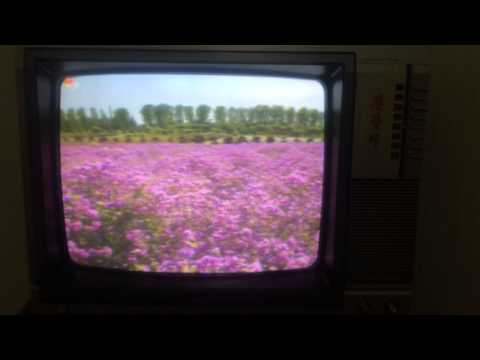 North Korea old television and Korea song