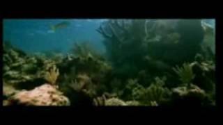Blue - Blue hindi movie full Song trailer promo 2009