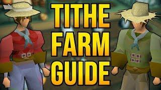 Tithe Farm Guide   100K+ Farming XP/HR & 70 Points Per Hour [OSRS]