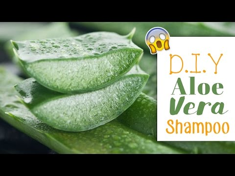 D.I.Y  NATURAL homemade Aloe Vera Shampoo (Hair Growth)