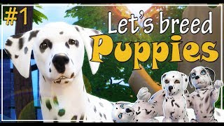 The Sims 4 Cats and Dogs - Let's play and breed Dalmatian puppies - Ep. 1 - We are pregnant!