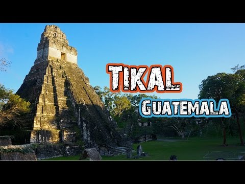 Hasta Alaska - Tikal: The INCREDIBLE Lost Mayan Civilization - S03E05