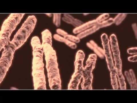 16 -- Watson e Crick, il DNA e il segreto della vita -- James Watson