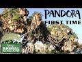 First Time Visit to Pandora: The World of Avatar (Disney's Animal Kingdom)