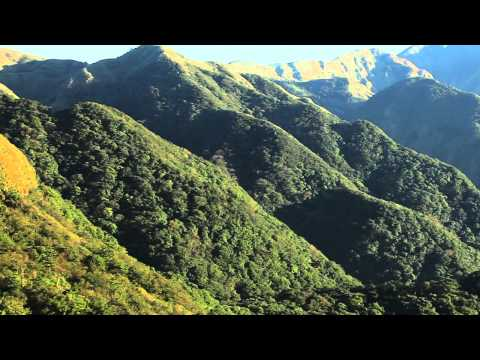 陽明山國家公園_人與森林