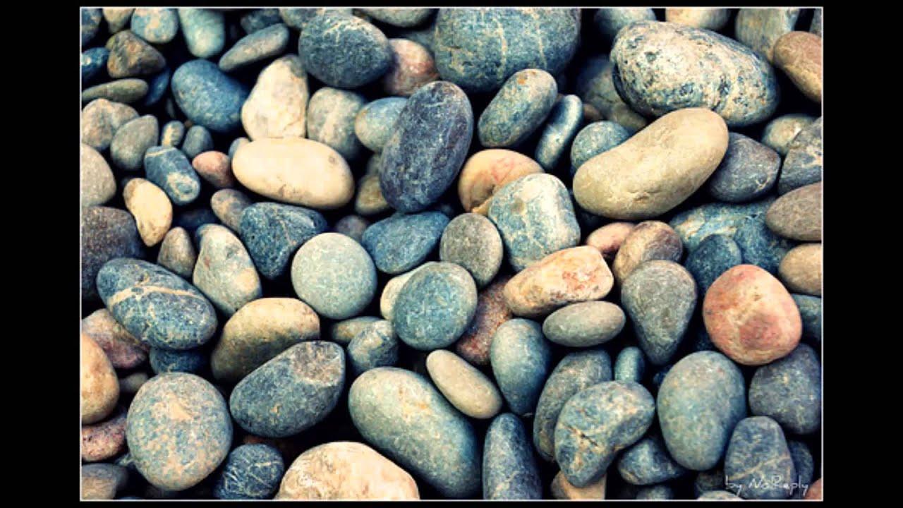 божья коровка гранитный камушек картинки