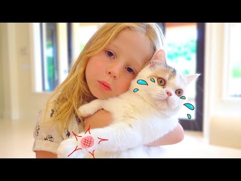 Stacy and the best cat stories for kids