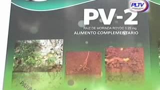 PV-2: suplemento nutricional cubano para estimular y revitalizar