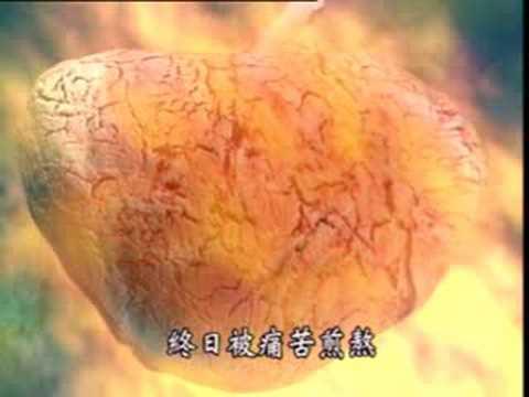 珍惜生命-文殊菩薩前生故事上集-2