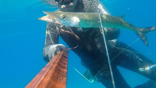 April 2016 spearfishing (sinarit,turna,sargoz,eskina) eagean mix by Cihan atahan