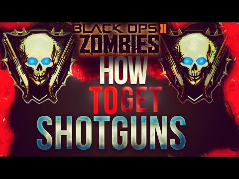 Black Ops 2 Zombies - How To Get Shotguns! BO2 Ranking System Explained!