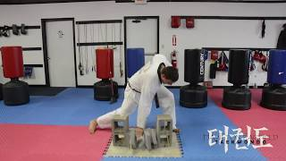 How to Break Bricks Step-By-Step Brick Breaking with your Hand in TaeKwonDo