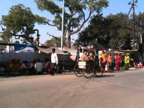 Cattle Fair in Pushkar