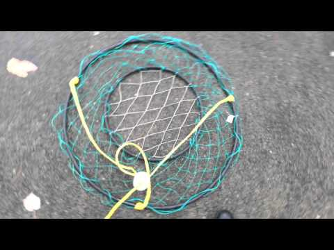 Prepare Ring Net Crab Trap for Salt Water Crabbing