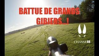 Chasse en Battue Cervidés Sangliers Saison 2017/2018 Blaser R8
