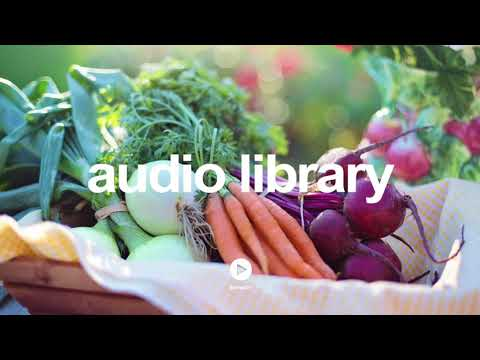 5 Cents Back By Audionautix   No Copyright Music YouTube - Free Audio Library