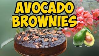 No Fail Avocado Brownies | Healthy Brownies | No Flour | Flourless | Simple Ingredients | Kids Fav
