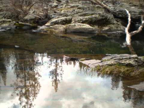 Prospecting Tuolumne county Ca.wmv
