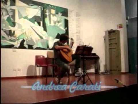 """SCUOLA DI MUSICA """"FASSINA"""" CHITARRA CLASSICA E FLAUTO TRAVERSO"""