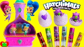 Shimmer and Shine Jewelry Box and Hatchimals CollEGGtibles