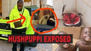 #EXPOSED THE TRUE STORY & BIOGRAPHY OF HUSHPUPPI'S RICHES, MONEY, CARS, LUXURY LIFESTYLE