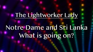 Notre Dame & Sri Lanka- What is going on? End Times or Energy Shift?