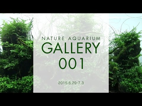 [ADAview] NATURE AQUARIUM GALLERY(EN) 2015.6.29-7.3