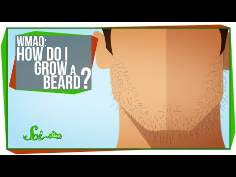 World's Most Asked Questions: How Do I Grow a Beard?
