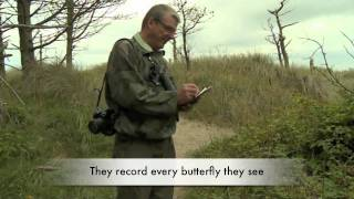 Irish Butterfly Monitoring Scheme.mov