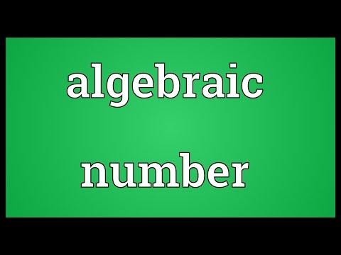 Header of Algebraic Number