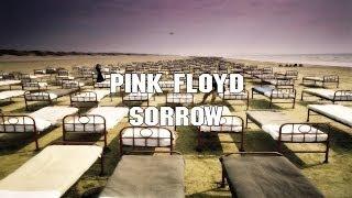 Watch Pink Floyd Sorrow video