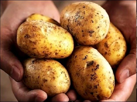 "Peru News: The Wall Street Journal - ""NASA Really Is Trying To Grow Potatoes on Mars"""