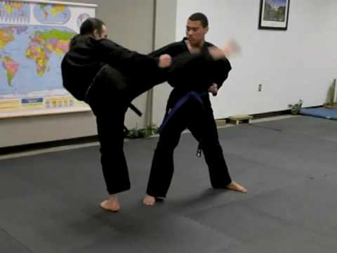 Shorin Ryu Karate : One on one training with Bubba Image 1