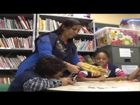 Projetos de sustentabilidade em disciplinas curriculares - Jornal Futura - Canal Futura