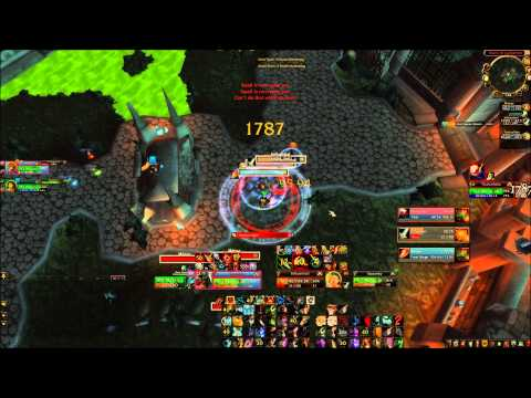 Junglecleave vs WMP(Warrior/mage/pally)