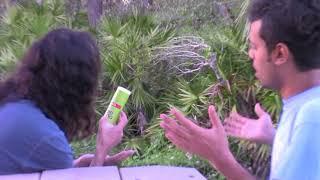 Jui Coconut Hair Oil (Tribute)