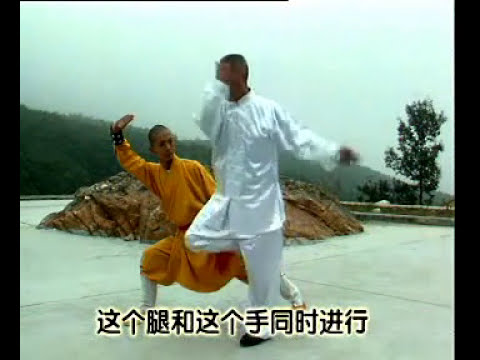 Shaolin long fist forms