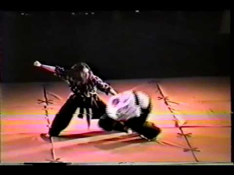 1993 Metro Manila Grand Exhibition Of Martial Arts - Hwa Rang Do Image 1