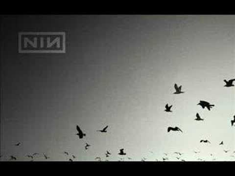 Nine Inch Nails - 11 Ghosts Ii