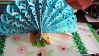 Peacock pop-up card