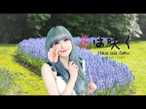 Hana Wa Saku 花は咲く(flowers Will Bloom) (jemma Cover) video
