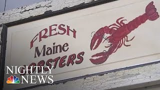 Lobster Emoji? Maine is Pushing for It | NBC Nightly News