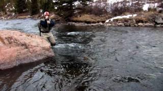 "2010 Winston Rods Silver Trout Winner, ""Lower 48 - A Fly Fishing Film"""