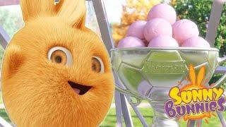 Cartoons for Children | Sunny Bunnies SUNNY BUNNIES ICE CREAM TROPHY | Funny Cartoons For Children