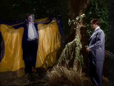ABBOTT & COSTELLO MEET FRANKENSTEIN: BAT TRANSFORMATION