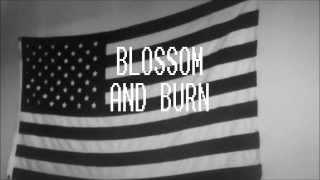 Watch Trash Talk Blossom & Burn (feat. Hodgy Beats & Tyler The Creator) video